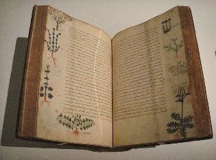 800px-Dioscorides_De_Materia_Medica_Byzantium_15th_century-315x233